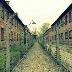 Stacheldraht im Konzentrationslager Auschwitz